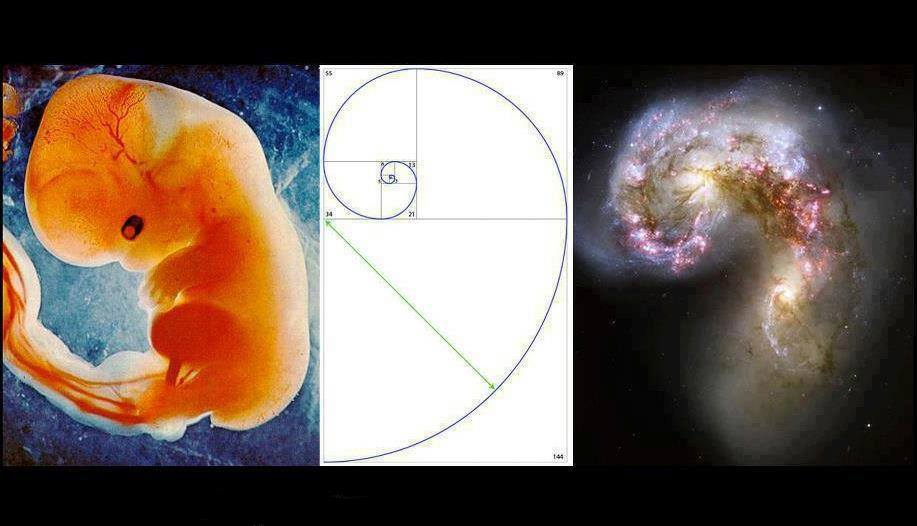 heilige geometrie 2