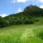 Magdalenes en Katharen(2)- Mt Ségur